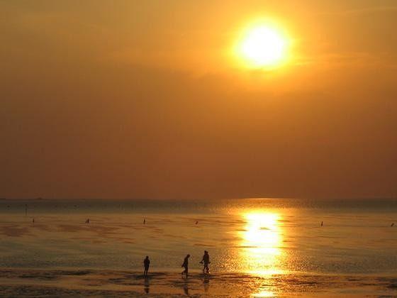 large_4489330-Enjoy_The_Sunset.jpg