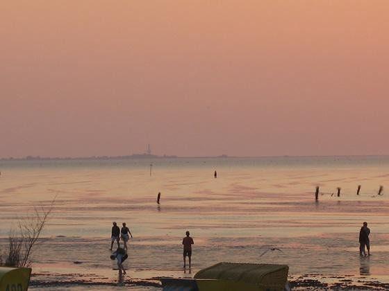 large_4489331-Enjoy_The_Sunset.jpg