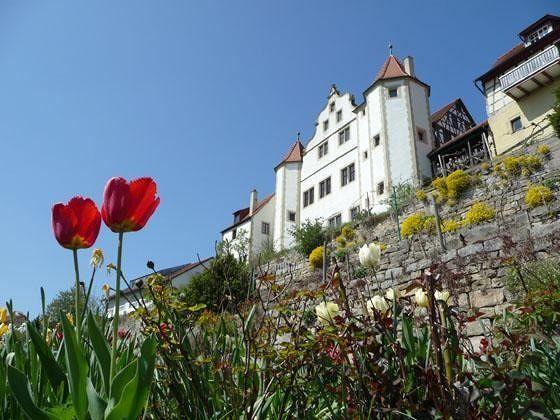 large_4806499-Gochsheim_castle_Gochsheim.jpg