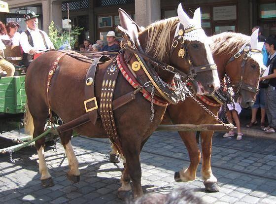 Parade on Plärrer opening day  - Augsburg