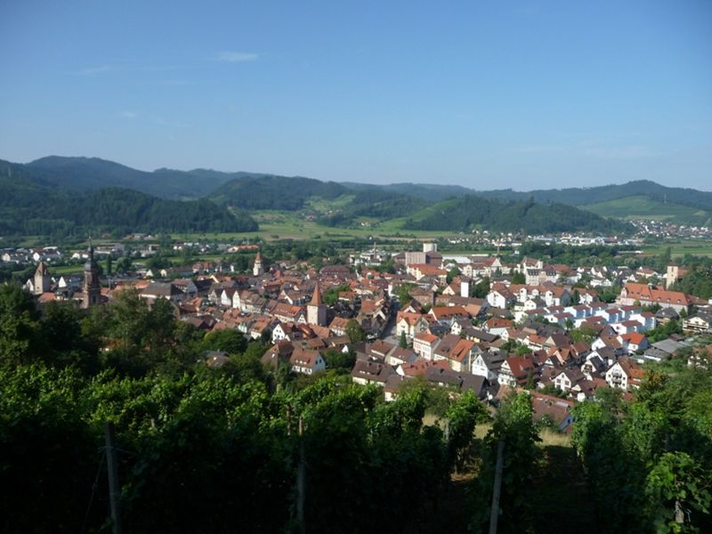 large_6755983-Bench_with_a_View_Gengenbach.jpg