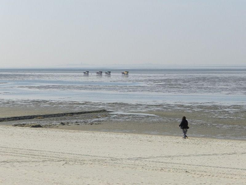 large_7355092-The_Beach_Off_Season.jpg