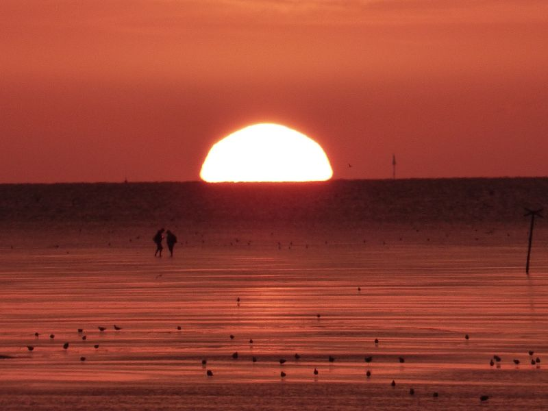 large_7745713-Enjoy_The_Sunset.jpg