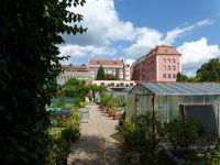 145706907149161-Ogrod_botani..ty_Wroclaw.jpg