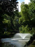 179035077149157-Ogrod_botani..ty_Wroclaw.jpg