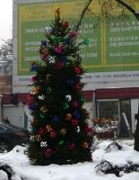 181175014994104-Christmas_tr.._Zgorzelec.jpg