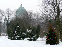 183659684994105-Christmas_tr.._Zgorzelec.jpg