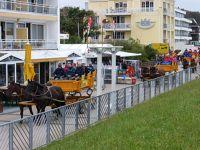 346222116792930-Horse_Powers..r_Cuxhaven.jpg