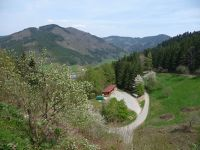 38737016760756-Landscape_fu..Gengenbach.jpg