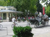 4153769-Carriage_Rides_On_Lichtenthaler_Allee.jpg