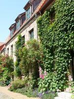 4579107-The_tiniest_front_gardens_Rostock.jpg