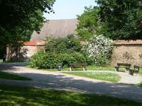 4579277-Park_along_the_town_wall_Rostock.jpg