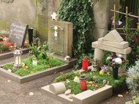 4587136-Zentralfriedhof_baby_graves_Muenster.jpg