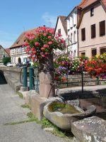 4593438-sBruch_Along_Lauter_Canal_Wissembourg.jpg