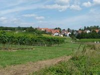4881046-On_the_way_to_Schweigen_Wissembourg.jpg