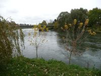 4954053-Donauspitz_Where_The_Rivers_Meet.jpg