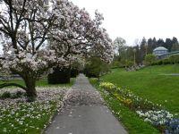 6185642-Wilhelma_The_Moorish_Garden_Stuttgart.jpg