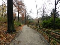 6431023-Borbeck_Park_Essen.jpg