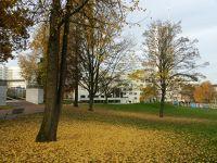6442772-Stadtgarten_Essen.jpg