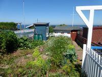 6789473-Allotment_Gardens_Helgoland.jpg