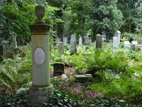 7156857-Jewish_Cemetery_Impressions_1_Wroclaw.jpg