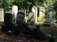 7156863-Jewish_Cemetery_Impressions_1_Wroclaw.jpg