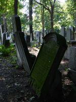 7156869-Jewish_Cemetery_Impressions_2_Wroclaw.jpg