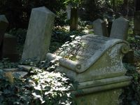 7156871-Jewish_Cemetery_Impressions_2_Wroclaw.jpg