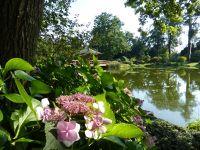 7176833-Japanese_Garden_Wroclaw.jpg