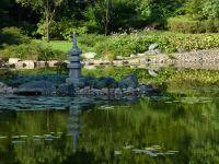 7176836-Japanese_Garden_Wroclaw.jpg