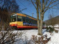 7299029-Up_the_valley_we_go_Bad_Herrenalb.jpg