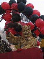 Miau2.jpg