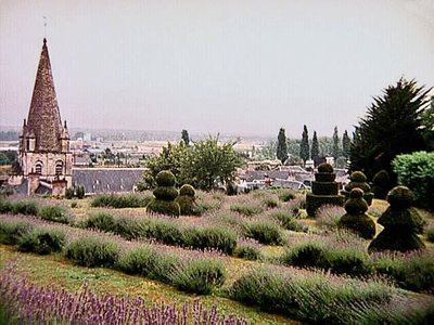 Garden of Château de Cinq-Mars with lavender