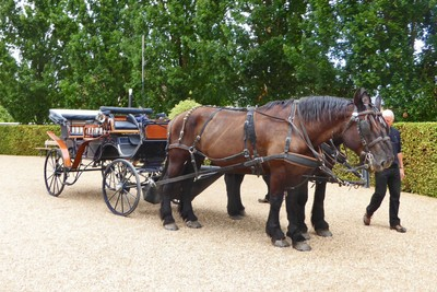 Carriage rides at Château Azay-le-Rideau