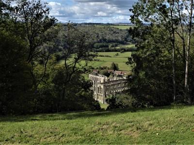 View of Rievaulx Abbey from Rievaulx Terrace