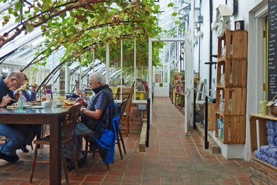 Lunch at The Vinehouse Cafe at Helmsley Walled Garden