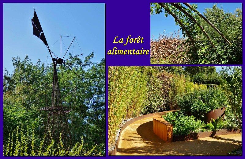 large_004e0_A_Garden_Forest.jpg