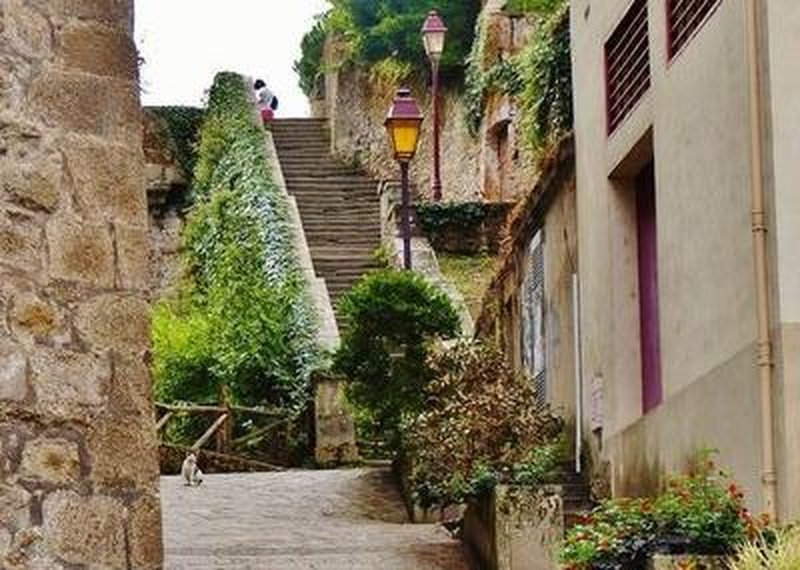 Stairway from the château down to the Saint-Antoine district (with cat)