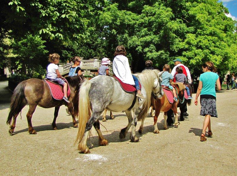 Pony rides in Parc Monceau in Paris