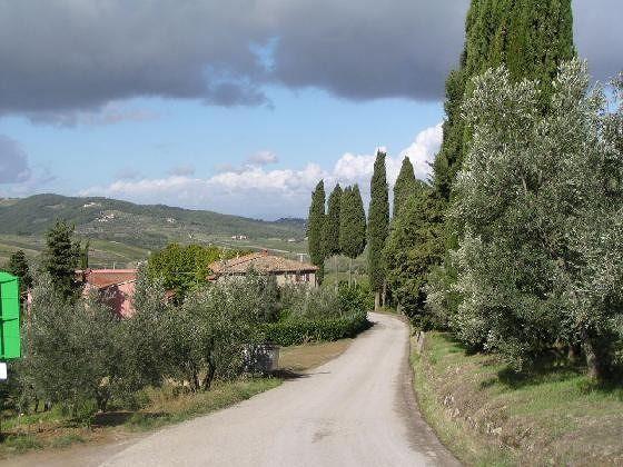Road to Terre di Melazzano above Greve in Chianti