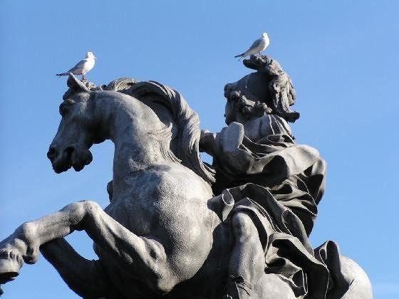 Art appreciation or pigeons in the park - Paris