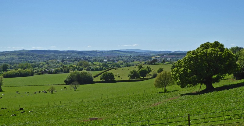 View from Killerton House Gardens