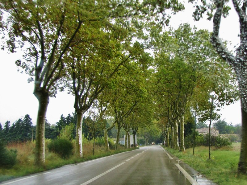 Driving to Saint-Remy-de-Provence in the rain