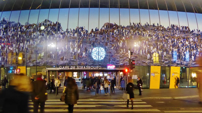 Gare de Strasbourg at Christmas (with penguins)