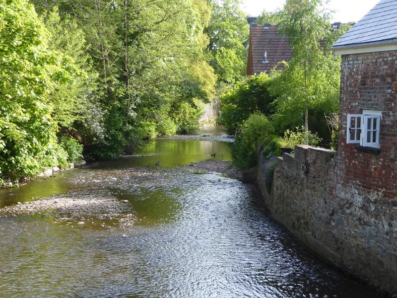 Scene along the river Lowman in Tiverton, Devon, UK