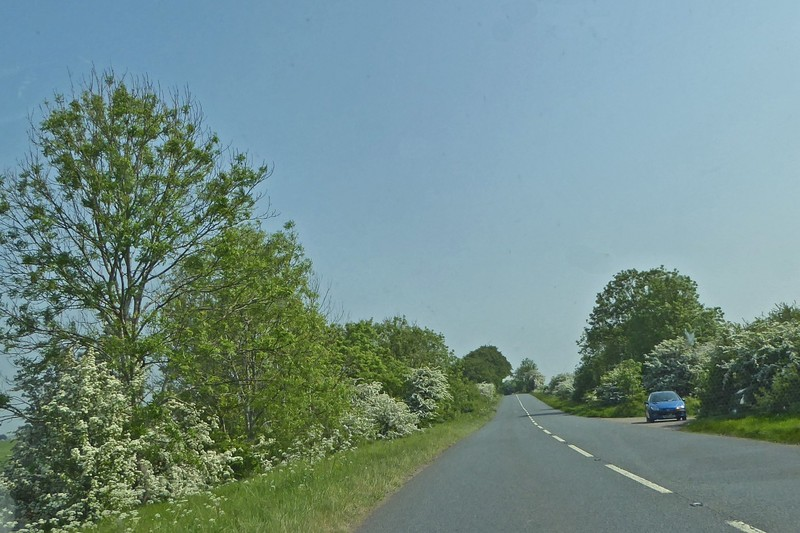 Driving to Lacock on Prince Harry's Wedding Day