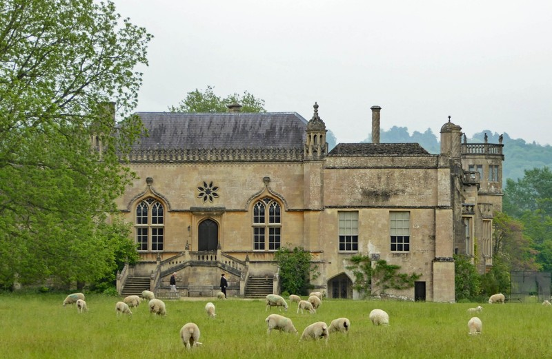 Lacock Abbey with sheep