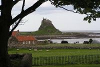 Lindisfarne Castle from the Priory yard