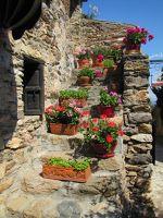Castelnou street