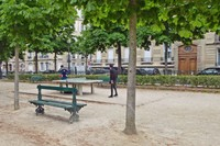 Ping pong in the Luxembourg Gardens